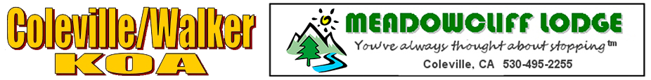 Meadowcliff Lodge & Coleville KOA